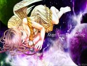 Angel lost the faleeng