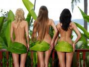 Femmes vertes